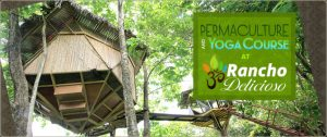 Permaculture and Yoga Course