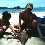 Jennifer Santiago at Tortuga Island with Peccary