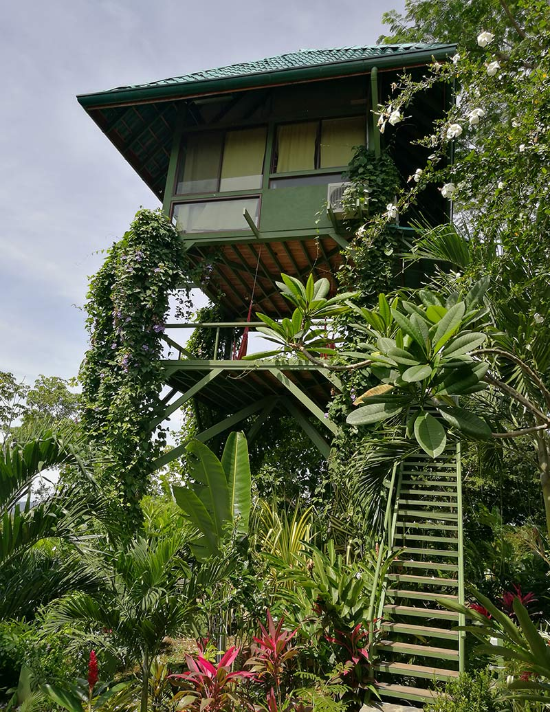 """Our Tower Treehouse, called """"The Garuda's Nest"""""""